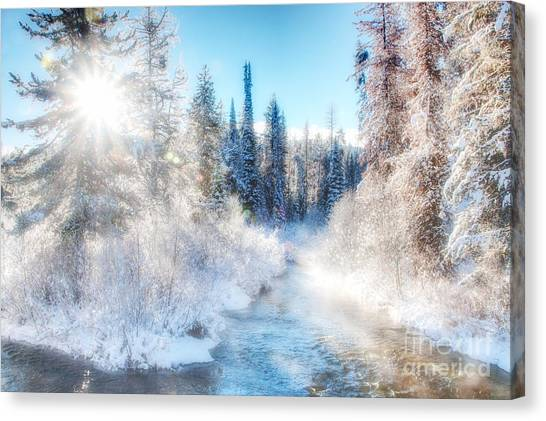 Winter Delight On Lolo Creek Canvas Print by Katie LaSalle-Lowery