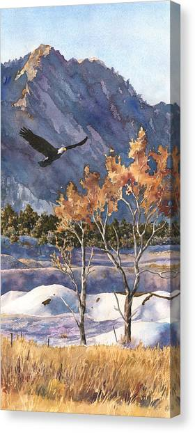 Colorado Canvas Print - Winter Drift by Anne Gifford