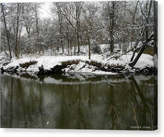 Winter Forest Series 2 Canvas Print