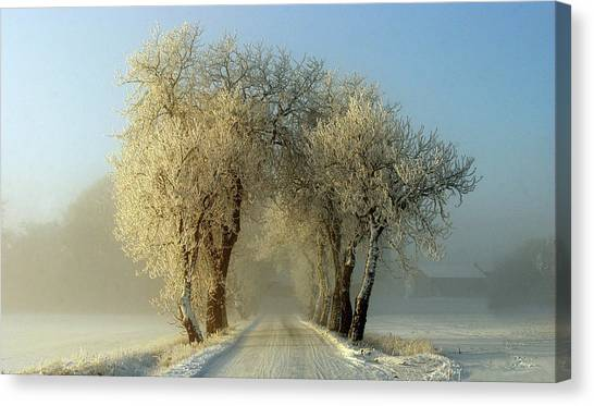 Hoarfrost Canvas Print - Winter  Gateway by Leif Westling