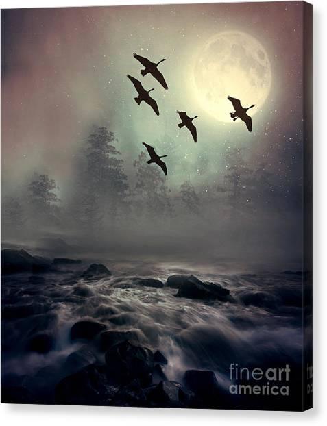 Winter Golden Hour Canvas Print