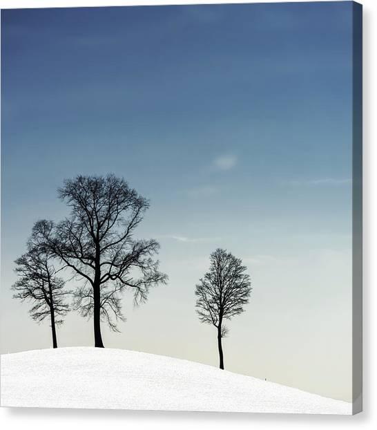 Winter Canvas Print - Winter Haiku by Piet Flour