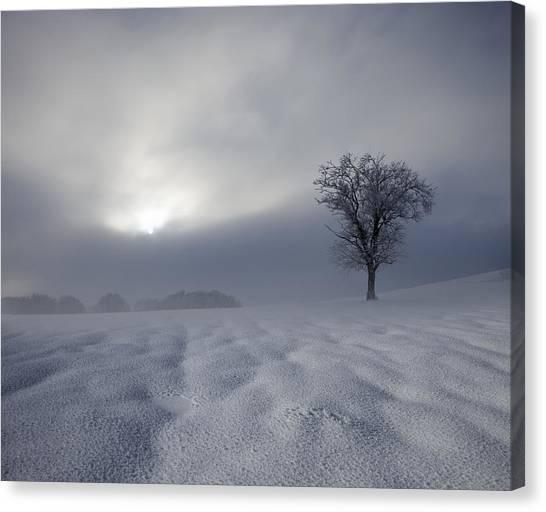 Alps Canvas Print - Winter Impression by Franz Schumacher