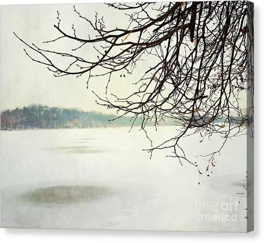 Winter Impressions IIb Canvas Print