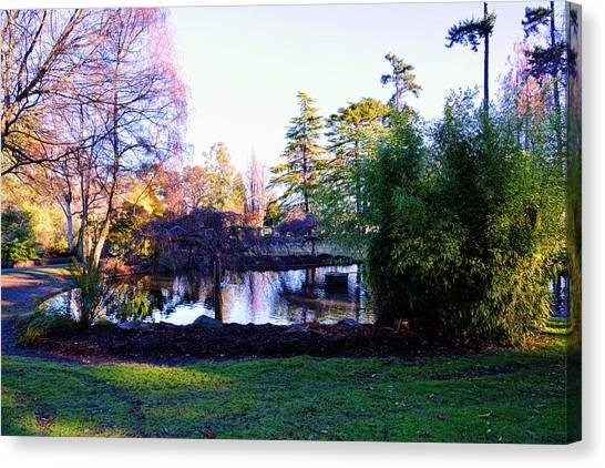 Winter In Beacon Hill Park Victoria Bc Canvas Print