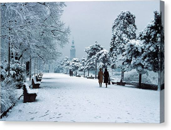 Winter In Belgrade Canvas Print