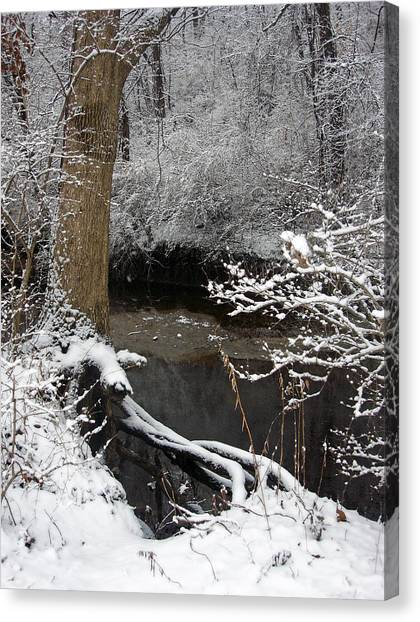 Winter In Rotary Park 2 Canvas Print