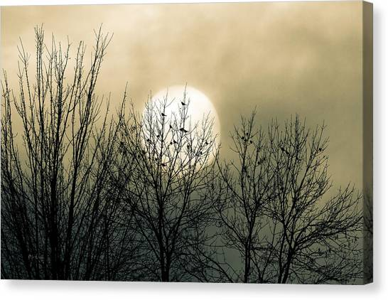 Loft Canvas Print - Winter Into Spring by Bob Orsillo