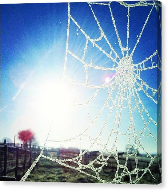 Spider Web Canvas Print - Winter Is On Its Way by Callum Rubery