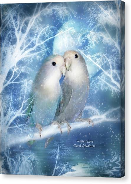 Lovebirds Canvas Print - Winter Love by Carol Cavalaris
