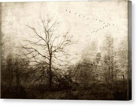 Flying Canvas Print - Winter Migration by Carol Leigh