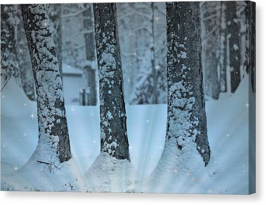 Storm Canvas Print - Winter Miracle by Trish Tritz