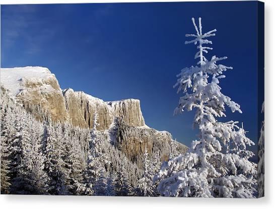 Winter Mountain Landscape Canvas Print by Ioan Panaite