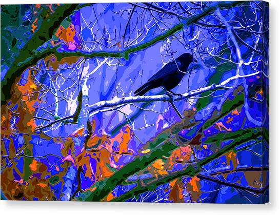 Canopy Canvas Print - Winter Night Roost by Brian Stevens