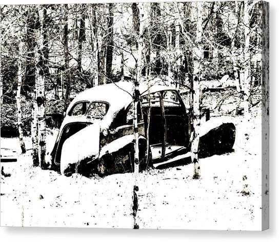 Winter Olds Canvas Print