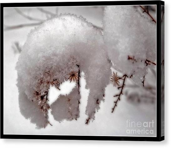 Winter On Aberdeen Canvas Print