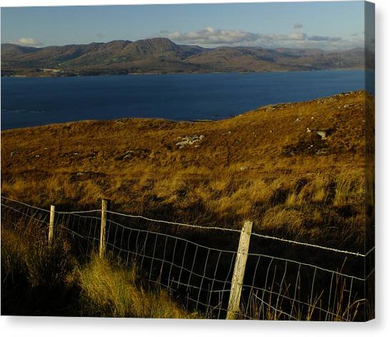 Winter On Bantry Bay Canvas Print