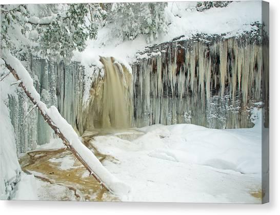 Winter On Carpenter Creek Canvas Print