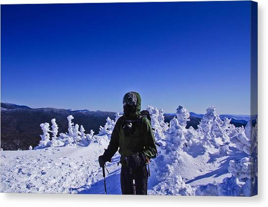 Winter On Mt Jackson Canvas Print