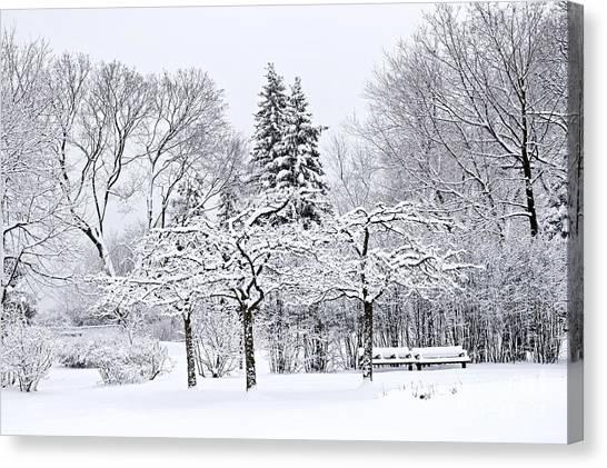 Winter Scenery Canvas Print - Winter Park Landscape by Elena Elisseeva