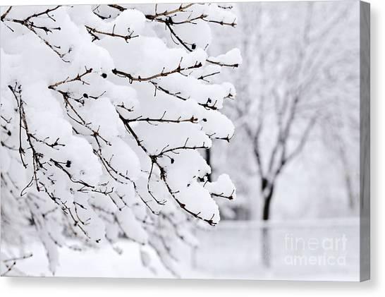 Winter Scenery Canvas Print - Winter Park Under Heavy Snow by Elena Elisseeva