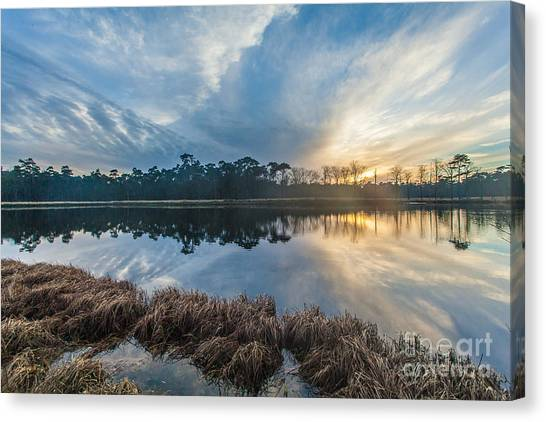 Winter Reflection-1 Canvas Print