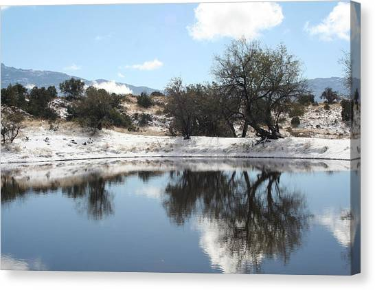 Winter Reflections Canvas Print