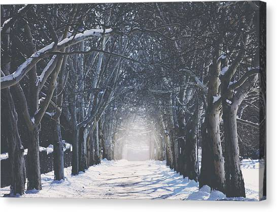 Winter Landscapes Canvas Print - Winter Road by Carrie Ann Grippo-Pike