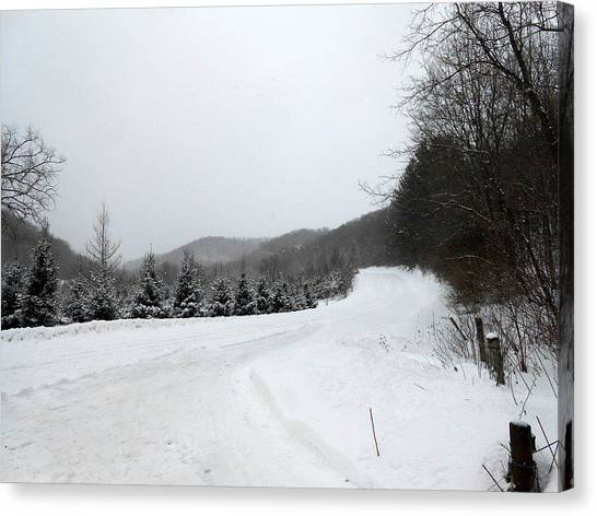 Winter Road Canvas Print by Dina  Stillwell