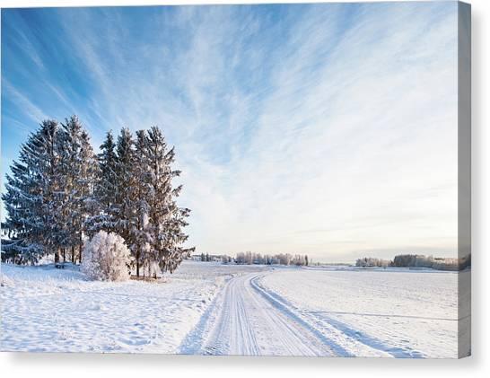 Winter Road Through Sweden Canvas Print by Lkpgfoto