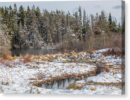 Winter Scene Maine  Canvas Print