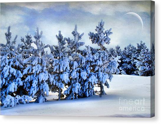 Winter Serenity  Canvas Print
