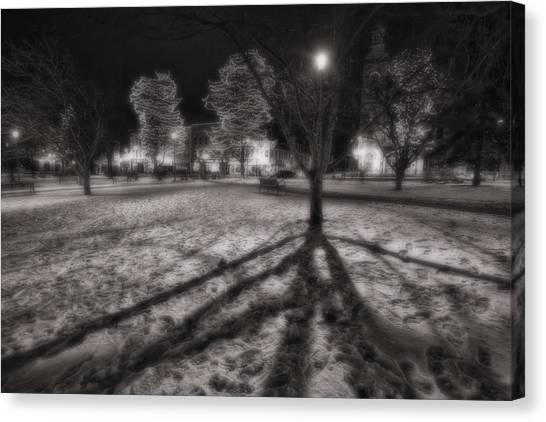Groundhogs Canvas Print - Winter Shadows And Xmas Lights by Sven Brogren