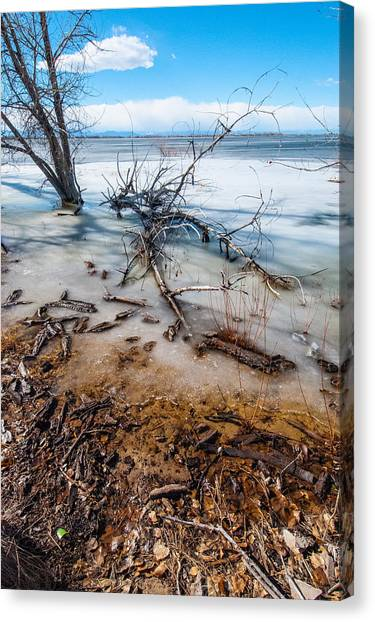 Winter Shore At Barr Lake_2 Canvas Print