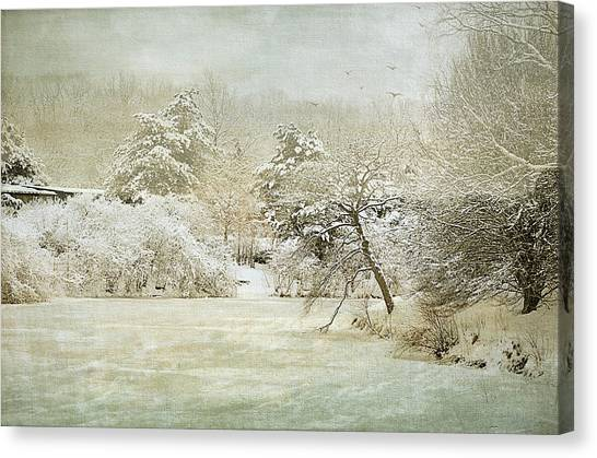 Winter Silence Canvas Print