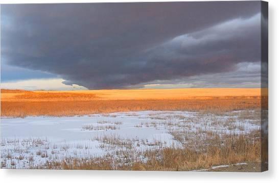 Winter Sky Alberta  Canvas Print by Susan Copley