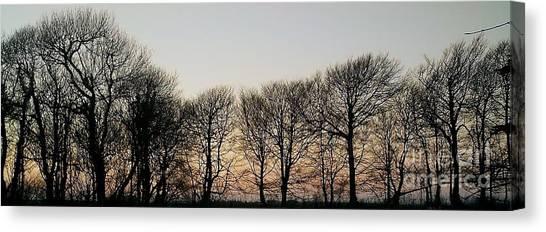 Winter Skyline Canvas Print
