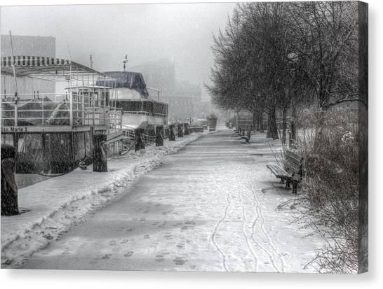 Winter Snow Storm II Canvas Print