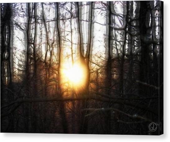Winter Solstice Canvas Print by Gun Legler