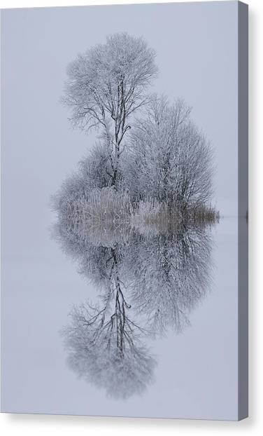 Winter Canvas Print - Winter Stillness by Norbert Maier