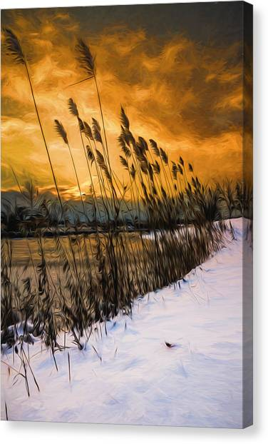 Winter Sunrise Through The Reeds - Artistic Canvas Print