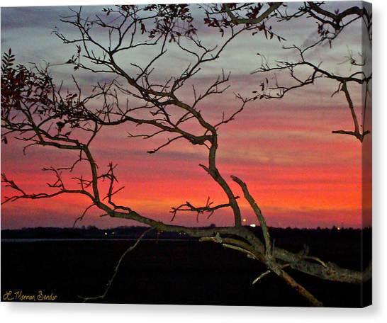 Winter Sunset Canvas Print by Lisa Merman Bender