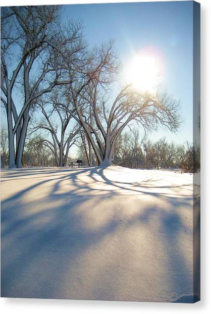 Winter Sunshine Canvas Print