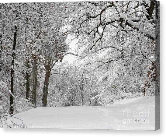 Winter Trail Canvas Print