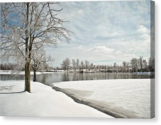 Winter Tree At The Park 2 Canvas Print
