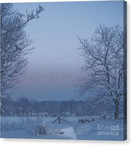 Winter Trees On West Michigan Farm At Sunrise Canvas Print