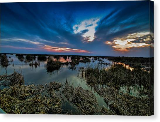 Winter Twilight At Anahuac Wildlife Refuge  Canvas Print