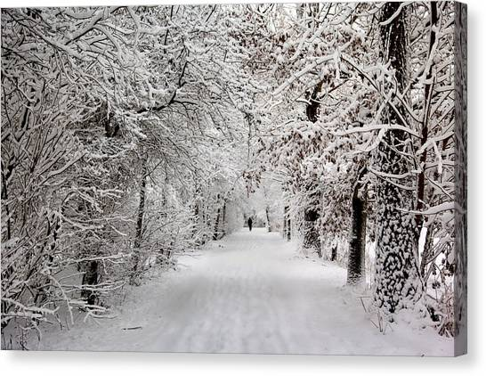 Winter Walk In Fairytale  Canvas Print
