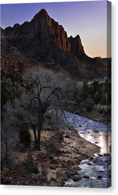 Ducks Canvas Print - Winter Watchman by Chad Dutson