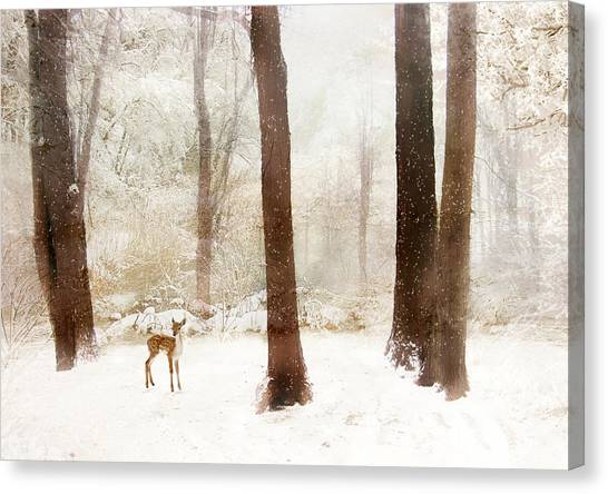 Faun Canvas Print - Winter Whimsy by Jessica Jenney